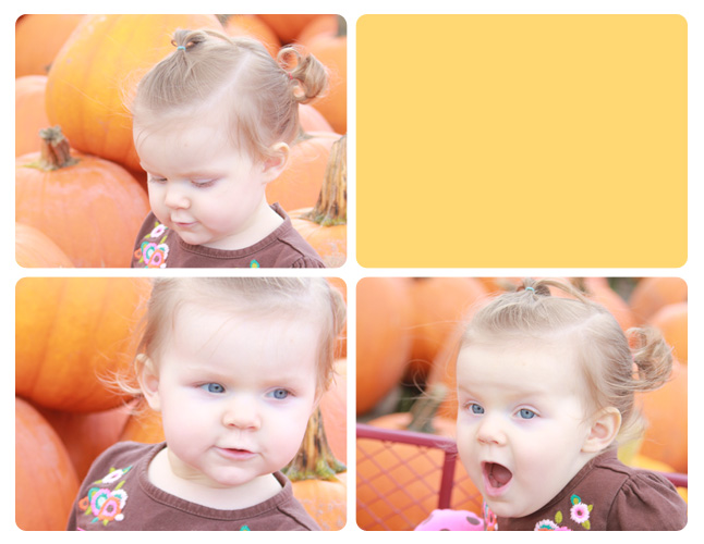 October_2014_Pumpkin Patch5